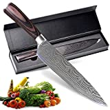 Pro Kitchen Chef's Knife 8 Inch, 17CR17 Stainless steel