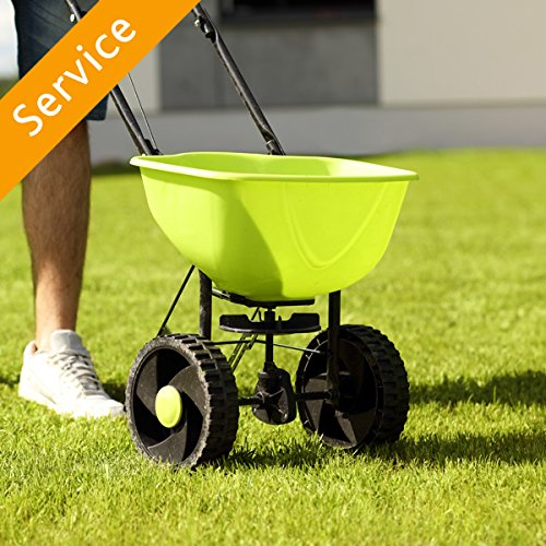 Lawn Overseeding - Customer's Products - Large by Amazon Home Services