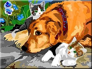 JUGUETE DE PINTURA POR NUMEROS - Perros y gatos - INTERHOME©: Amazon.es: Juguetes y juegos