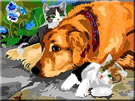 Dipingere Con I Numeri Cane E Gatto Amazonit Giochi E Giocattoli
