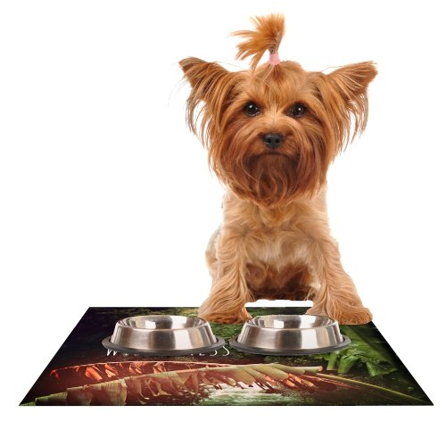 Kess InHouse Deepti Munshaw Escape to Wilderness  Rainbow Feeding Mat for Pet Bowl, 18 by 13-Inch