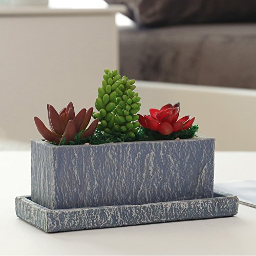 8 inch Textured Gray Cement Rectangular Succulent Planter Pot with Decorative Display (Rectangular Concrete)