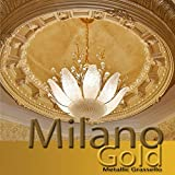 Milano Gold Metallic (Fine) Authentic Venetian Metallic Plaster from Italy. The ultimate in luxury finishes.