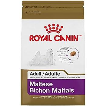 Amazon Com Royal Canin Maltese 24 Canine Adult Dry Dog