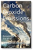 Carbon Dioxide Emissions: Between the Sword and the Wall