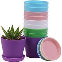 10 Pcs Plastic Planters Indoor Flower Plant Pots, Mini Flower Seedlings Nursery Pot/Planter/Flower Pot with Pallet…