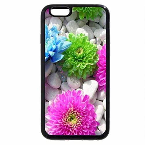 iPhone 6S / iPhone 6 Case (Black) MultiColored Flowers