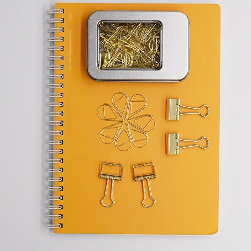 100 Pcs Paper Clips and 10 Pcs Binder Clips Assorted Size Gold Clips With Storage Case by IUUMATE