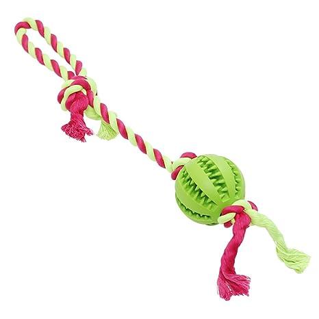 ueetek perro Playgirl juguete pelota con cuerda diente de limpieza ...