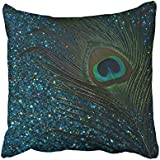 Shorping Zippered Pillow Covers Pillowcases 16X16 Inch glittery aqua blue peacock round pillow Decorative Throw Pillow Cover ,Pillow Cases Cushion Cover for Home Sofa Bedding