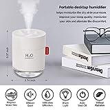 Portable Mini Humidifier, 500ml Small Cool Mist