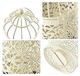 Ivenf-Cast-Iron-White-Handmade-Fairytale-Birdcage