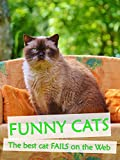 Funny Cats - The best cat fails on the Web