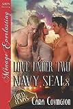Love under Two Navy Seals, Cara Covington, 1619265982