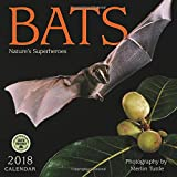 Bats 2018 Wall Calendar: Nature's Superheroes