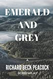 img - for Emerald and Grey book / textbook / text book
