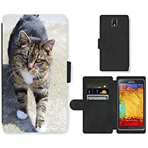 Super Stella Cell Phone Card Slot PU Leather Wallet Case // M00107092 Cat Tabby Feline Domestic Striped // Samsung Galaxy Note 3 III N9000 N9002 N9005