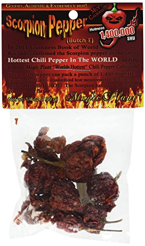 Dried Scorpion Butch-T Chili Pepper Pods, .25 (0.25 Ounce Pods)