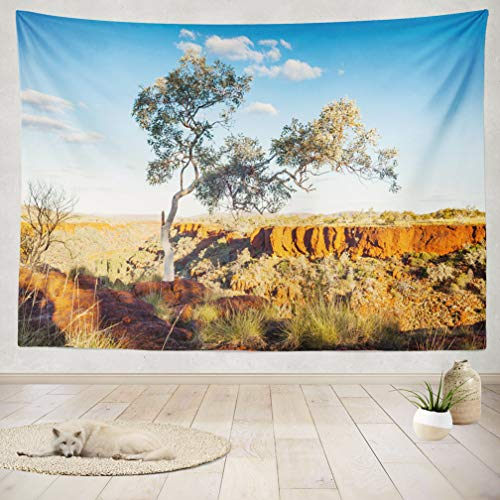 ASOCO Tapestry Wall Handing Ghost Line National Park Western Australia Australia Australia Australian Wall Tapestry for Bedroom Living Room Tablecloth Dorm 60X80 Inches