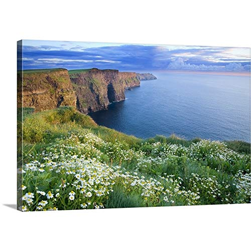 GREATBIGCANVAS Gallery-Wrapped Canvas Entitled Summer Daisies Growing in Abundance On Cliffs of Moher, County Clare, Ireland by Gareth McCormack 60