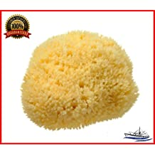 """Natural Sea Sponge SEA NATURE BRAND 5-6 Grada Type for Home Cleaning or Body Bath ideal for Baby Bathing and Face Cleaning Guaranteed"""""""