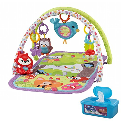 Fisher-Price 3-in-1 Musical Activity Gym/Playmat with BONUS Baby Wipes, 128 (Fresh Start Wooden Puzzle)