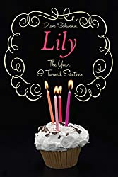 Lily: The Year I Turned Sixteen (The Year I Turned 16 Book 4)