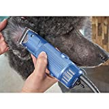 Oster Professional Turbo A5 Heavy Duty Animal Grooming Clippers with Detachable CryogenX #10 Blade, 2 Speed (078005-314-002)
