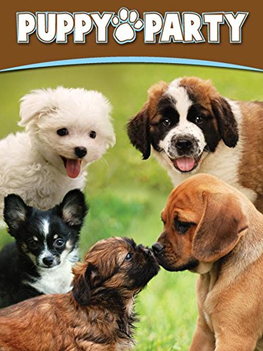 Puppy Party - Breed Puppies
