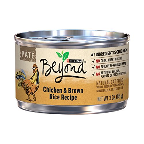 Purina Beyond Natural Canned Cat Food, Salmon and Brown Rice