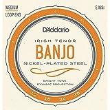 D'Addario EJ63i 12 - 36 Nickel Irish Tenor Banjo String