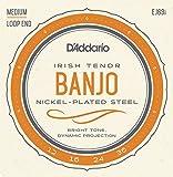 D\'Addario EJ63I Nickel Irish Tenor Banjo Strings, 9-30