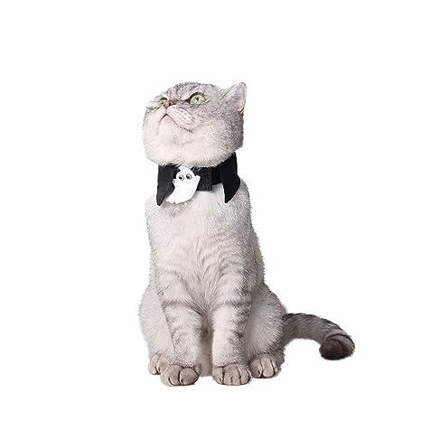Bulz Collar de Corbata para Perro y Gato, diseño Lindo para ...