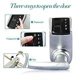 Adel Three-in-one Biometric Fingerprint Door
