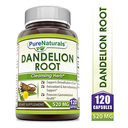 Pure Naturals Dandelion Root Dietary Supplement 520 Mg 120 Capsules- Supports Detoxification of Liver* Antioxidant & Anti-Inflammatory Support* Promotes Gastrointestinal Health* (Dandelion Pills)