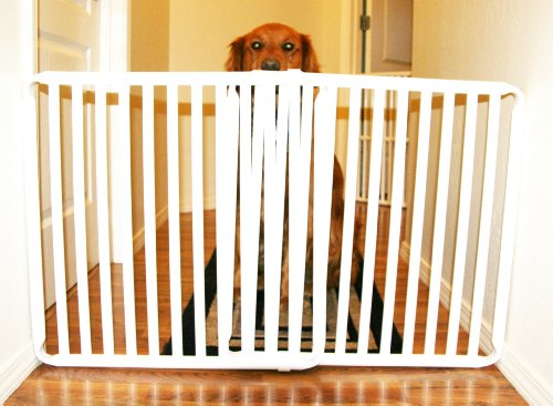 Rover Company Cat and Dog Gate, 30-Inch