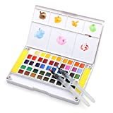 Dainayw Watercolor Paint Set - 48 Assorted Watercolors - Travel Watercolor Kit Includes 2 Water Brushes - 2 Sponges & A Mixing Palette