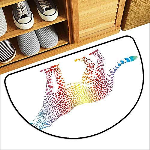DILITECK Front Door Mat Large Outdoor Indoor Rainbow Cheetah Rainbow Colored Smokescreen Camouflage Realsitic Animal Safari Wildlife Anti-Fading W24 xL16 Multicolor