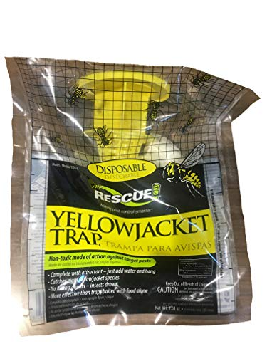 RESCUE! Non-Toxic Disposable Yellowjacket Trap, East of the Rockies