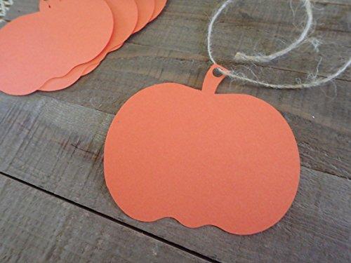 Pumpkin Tags 30