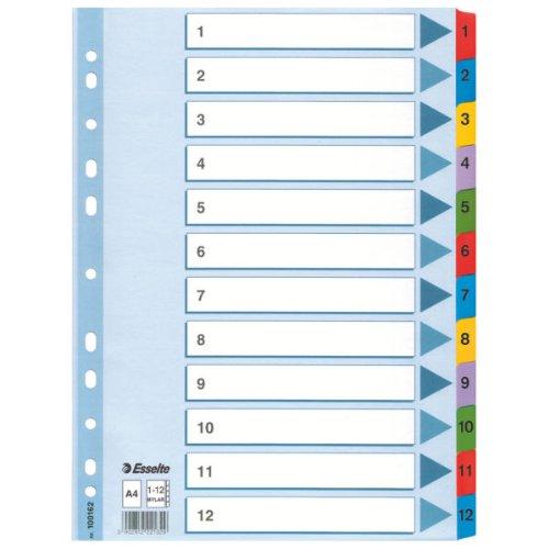 Esselte A4 1-12 Index, Heavy Duty Cardboard with Mylar Reinforced Tabs, Blue/Multicolour ()