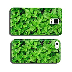 Menthe plant cell phone cover case iPhone5