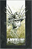 Witchblade Volume 2: Revelations