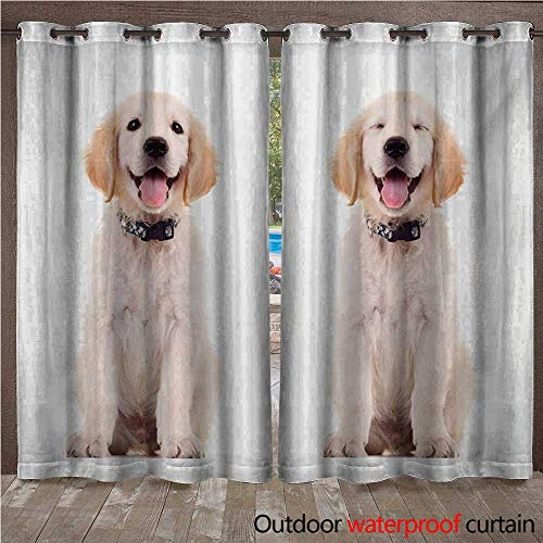 WilliamsDecor Golden Retriever Outdoor Balcony Privacy Curtain Two Emotional Poses of a Young Panting Domestic Puppy Happy and Playful W72 x L84(183cm x 214cm)