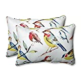 CC Outdoor Living Set of 2 Off White and Colorful Backyard Birds Over Sized Throw Pillows 24.5''