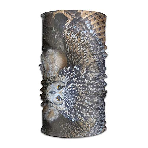 Animal Burrowing Owl Fashionable Outdoor Hundred Change Headscarf Original Multifunctional Headwear