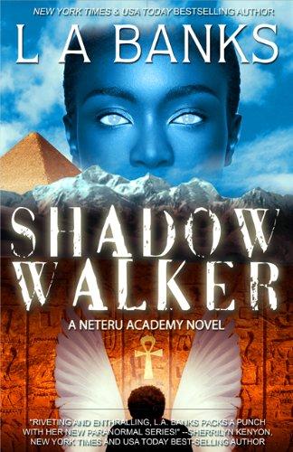 Shadow Walker (Neteru Academy Books)