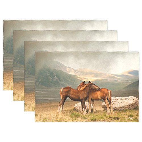 (WARMFM Ethel Ernest Love Animal Horses Hug Heat-Resistant Placemats, Polyester Tablemat Place Mat for Kitchen Dining Room Set of 6)