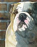 English Bulldog Dog Fine Art Print on 100% Cotton Watercolor Paper