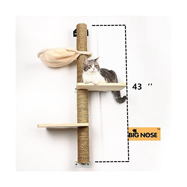 BIG NOSE- Wall Mounted Cat Scratching Post Multi Level Cat Shelves with Solid Wood Steps and Sunny Seat Hammock … 4